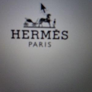 """""""HERMES"""" Mens Tie"""